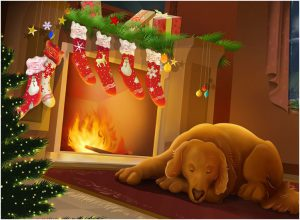 fiシニア犬用マット 冬場対策